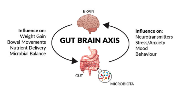 Gut Brain Connection >> Probiotics The Gut Brain Connection Healthy Eating Active Living